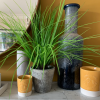 A lovely concrete pot with lovely faux seagrass plant from design company Gisela Graham.
