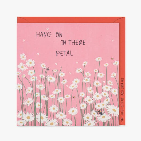 A vibrant pink card with lots of white daisies and buzzy bees with the words hang in there petal