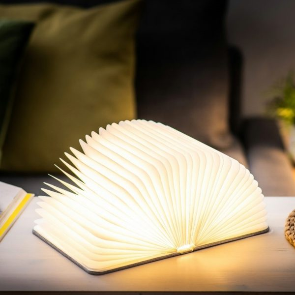 A light that looks like a book with a grey linen cover. Open the book and the paper pages light up. Charges with a USB charger. Portable and magnetic.