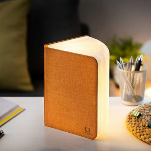 A light that looks like a book with an orange linen cover. Open the book and the paper pages light up. Charges with a USB charger. Portable and magnetic.