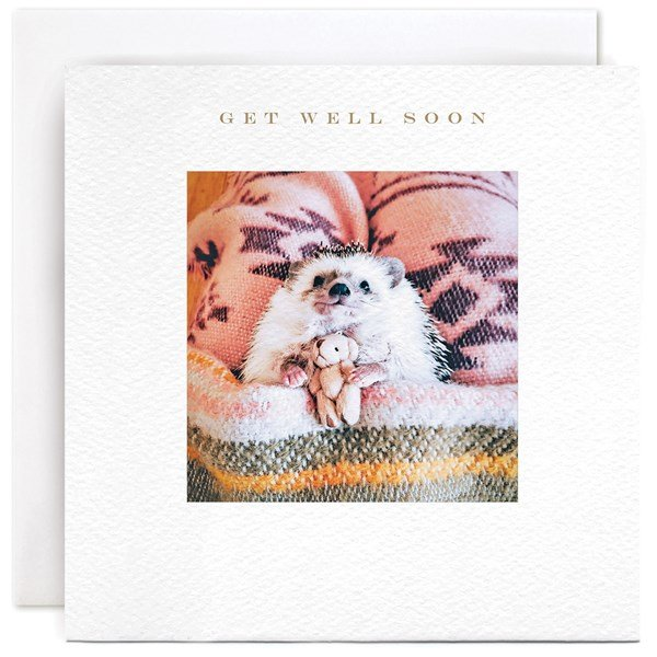 A square card with a photographic image of a sweet little hedgehog holding a tiny teddy bear . The words Get well soon are printed above the image