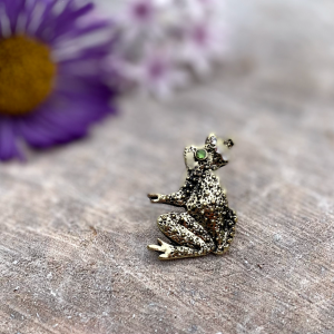 A sweet little brooch in the shape of a frog which is covered in little diamanté jewels