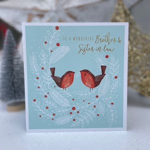 A wonderful Brother and Sister in law card with an image of 2 robins.